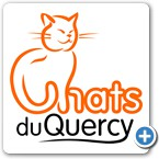 Chats du Quercy - Refuge chats